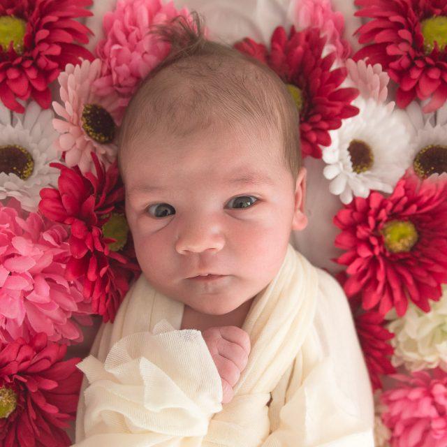 Fotografiranje novorojenčkov v studiu ali doma.