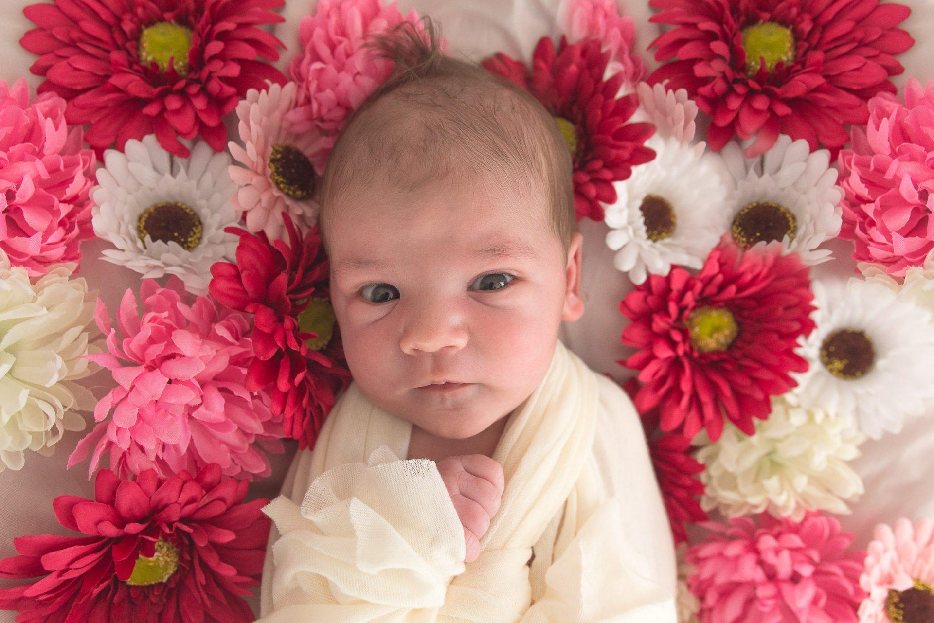 Fotografiranje novorojenčice v barviti in rožni sceni v objemu doma. Družina in družinska sreča.